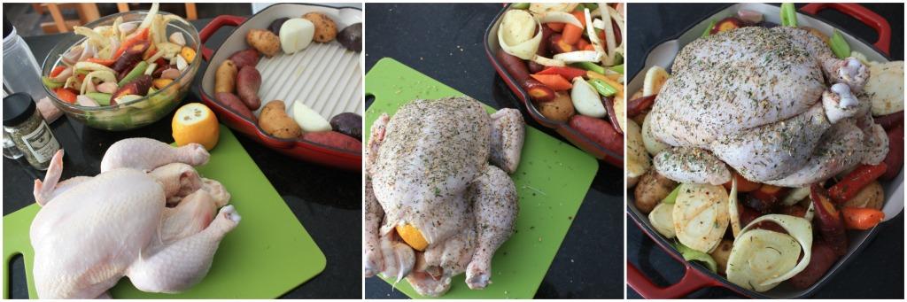 Chicken Collage 1