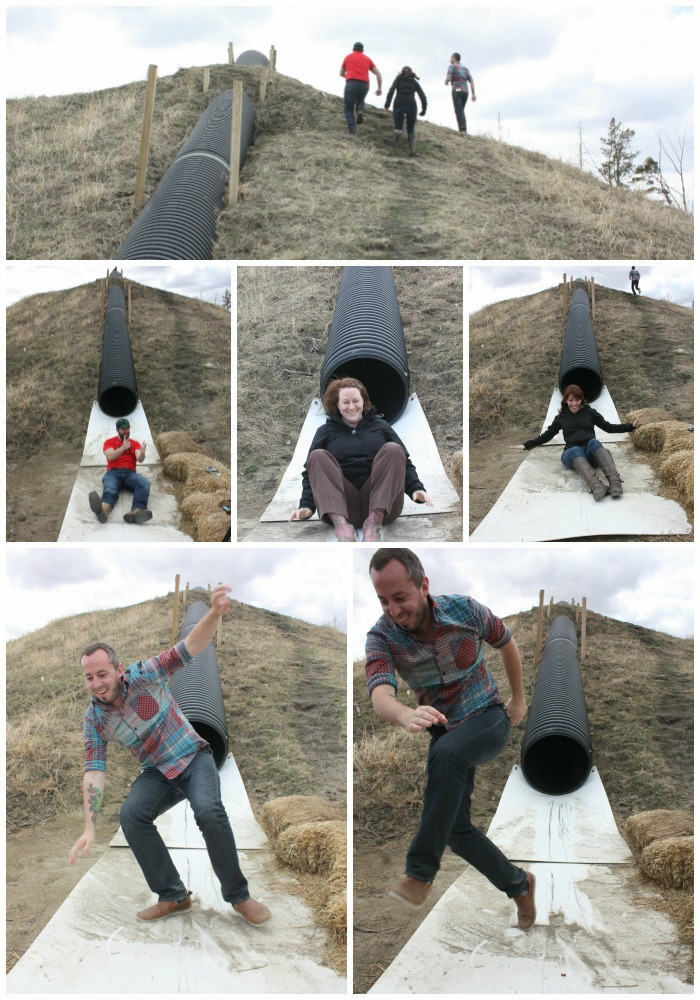 Jungle Farms Collage 2