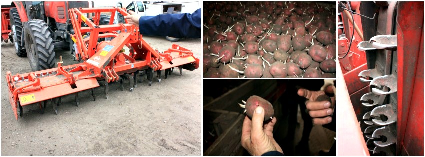 Upper Greens Collage 1