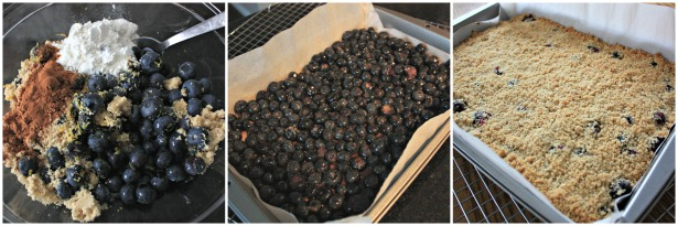 Berry Breakfast Bars 3